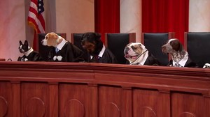 oral argument cincinnati.jpg
